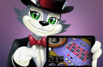 CoolCat Casino ruleta movil